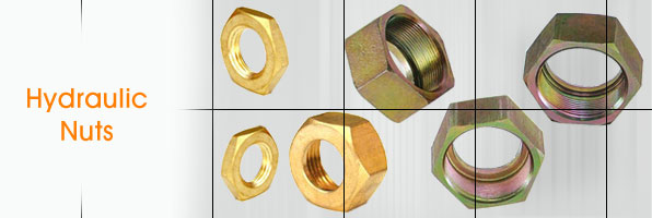 Hydraulic Nuts Hydraulic Hex Nuts Hydraulic Hose Pipe Fitting Nuts manufacturers suppliers in india punjab ludhiana
